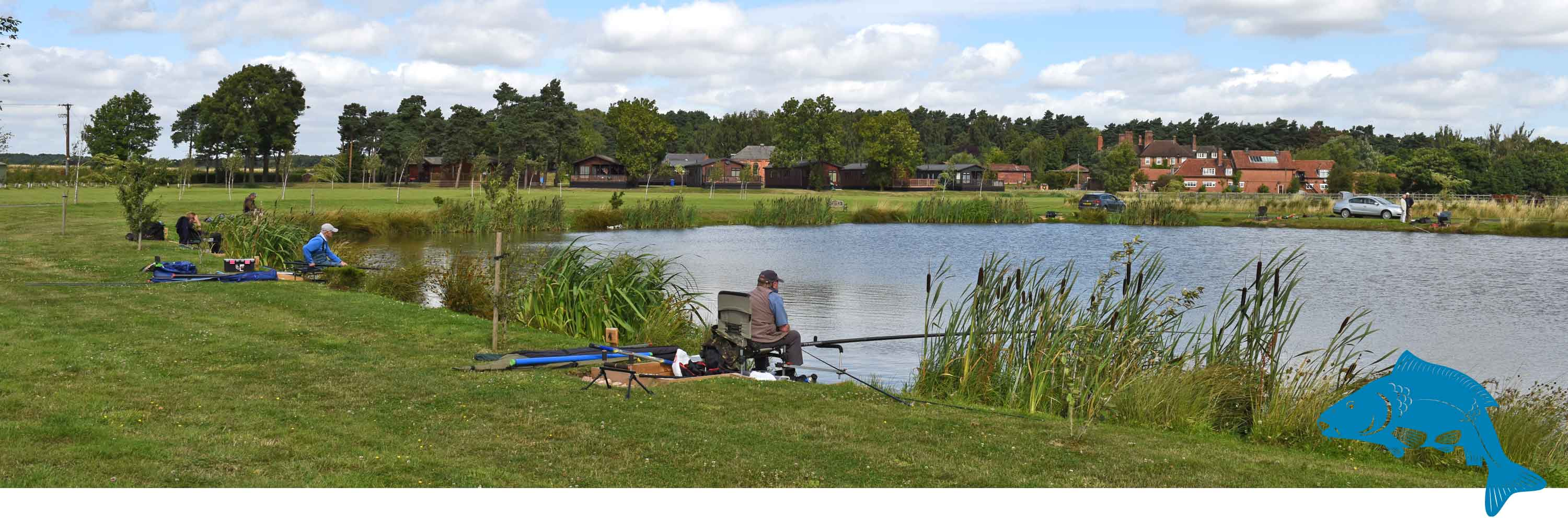 Mirror and Common Carp Fishing, Bevercotes, Newark, Notts