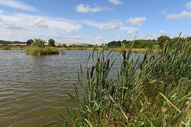 Fishing events and club matches nottinghamshire