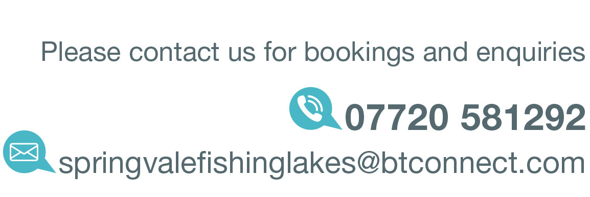 Click here to email Springvale Fishing Lakes in Nottinghamshire